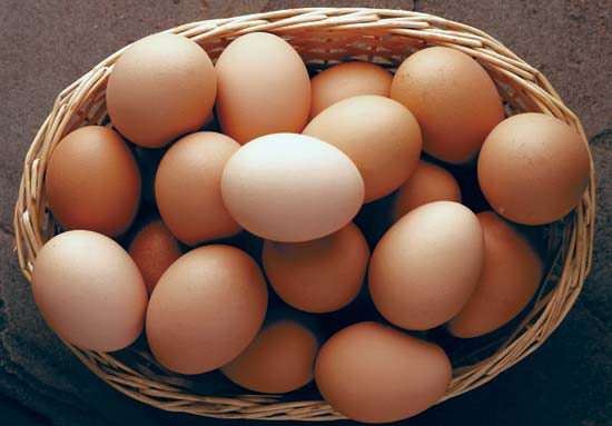 eggs for breast cancer