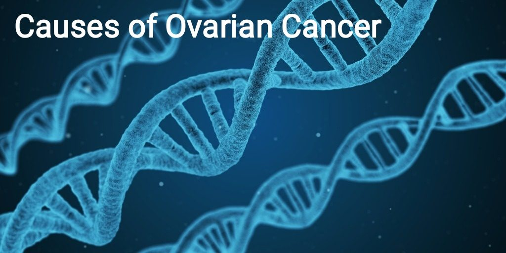Ayurvedic Remedies For The Treatment For Ovarian Cancer